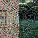 naturaleza y construccion patrones espacio blog